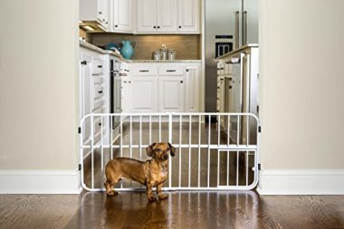 Lil' Tuffy Expandable Gate with Small Pet Door by Carlson Pet Products