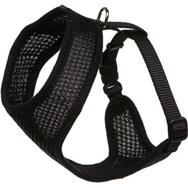 Coastal Pet Mesh Cat Harness