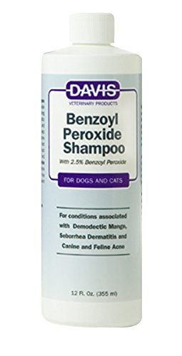Benzoyl Peroxide Pet Shampoo by Davis