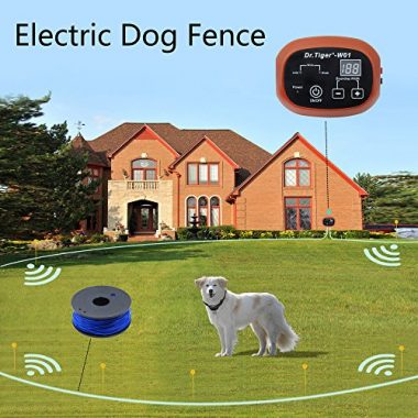Electric Dog Fence by Dr. Tiger