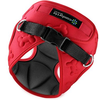 Easy to Put on and Take Off Small Dog Harness by Comfort Fit Metric USA