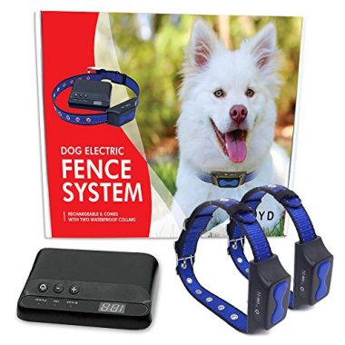 Electric Dog Fence Reviews Best Electric Dog Fences Of 2018