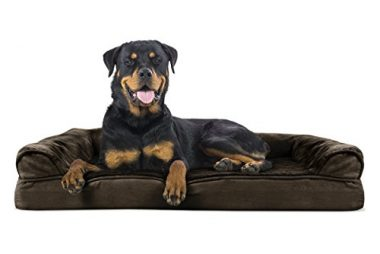 FurHaven Ultra Plush / Velvet Orthopedic Dog Coach Sofa Bed