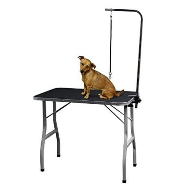 Paws and pals Grooming Table for Pet Dog or Cat