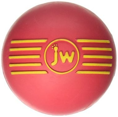 iSqueak Ball Rubber Dog Toy by JW Pet Company