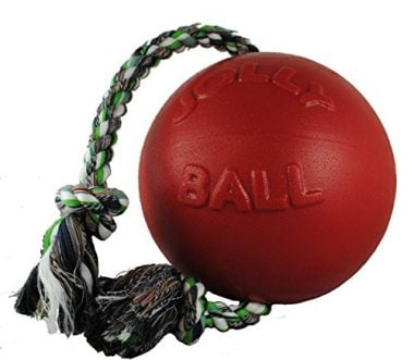 Romp-n-Roll Ball by Jolly Pets