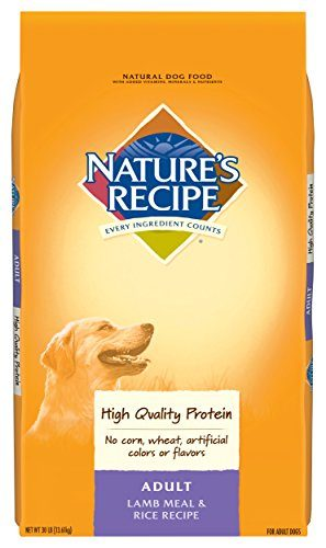 Adult Dry Dog Food by Nature's Recipe