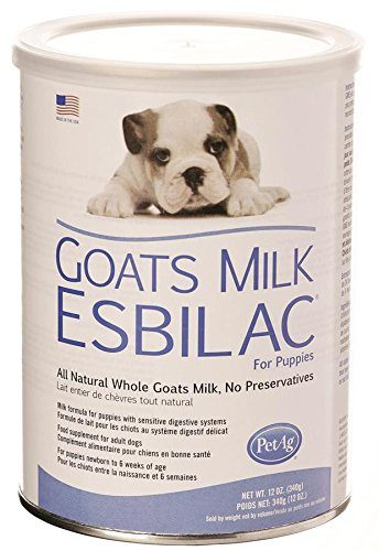 PetAg Goat's Milk Esbilac Powder