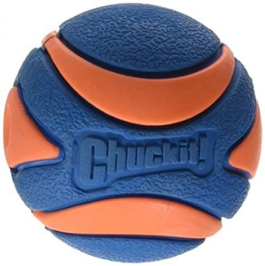 Chuckit! Ultra Squeaker Ball by Petmate