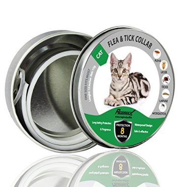 Flea and Tick Collar for Dogs/Cats