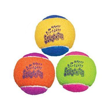 Air Dog Squeakair Birthday Balls Dog Toy by KONG
