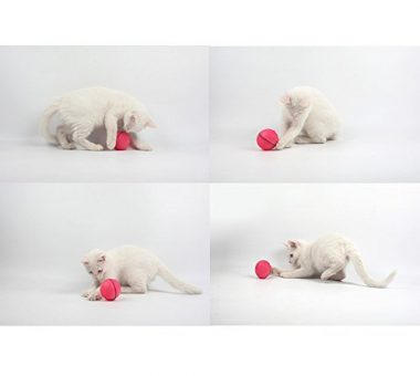 Interactive Cat Toy 360 Degree Self Rotating Ball
