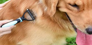 best dematting tools for dogs