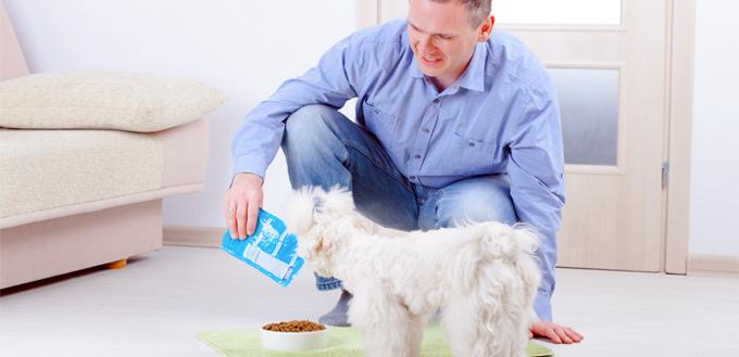 budget for dog food