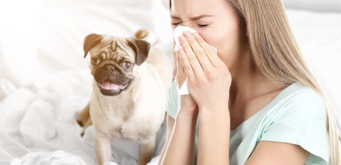 family members with allergies