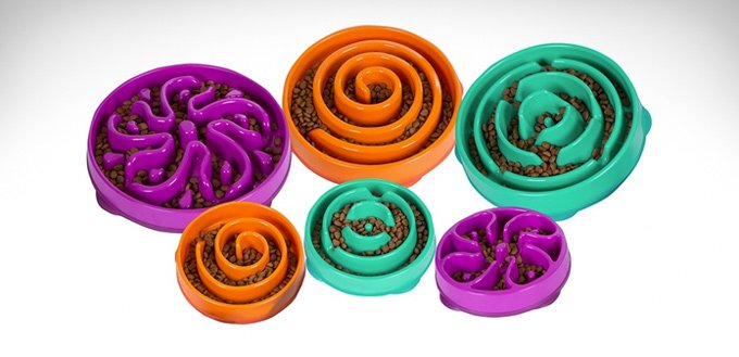 fun-feeder-for-dogs