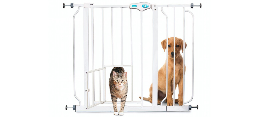gates for dogs
