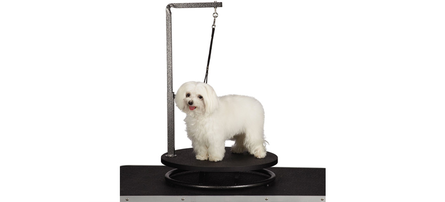 grooming tables for dogs