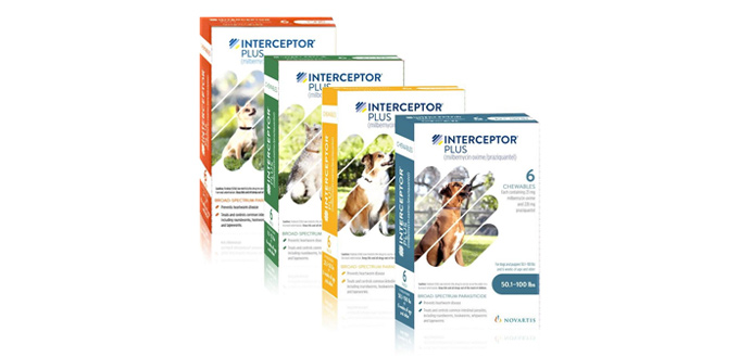 interceptor plus