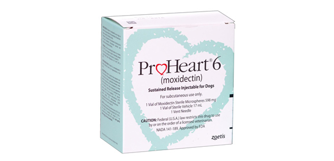 proheart 6 for dogs