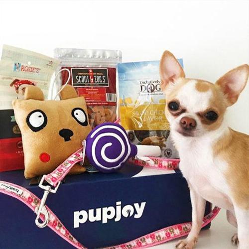 Pup Joy Box