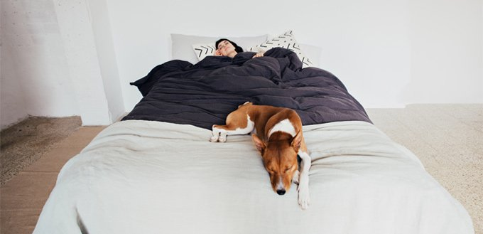 sleeping with a dog in the same bed