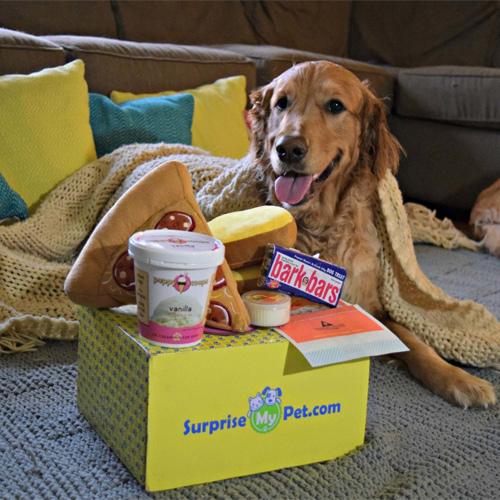 Surprise My Pet Box