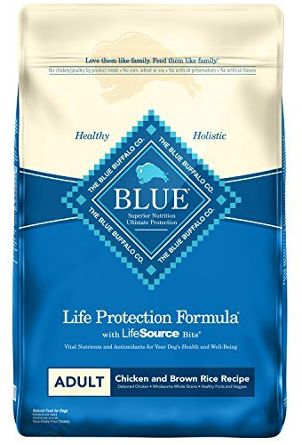 Blue Buffalo BLUE Life Protection Formula Adult Dry Dog Food