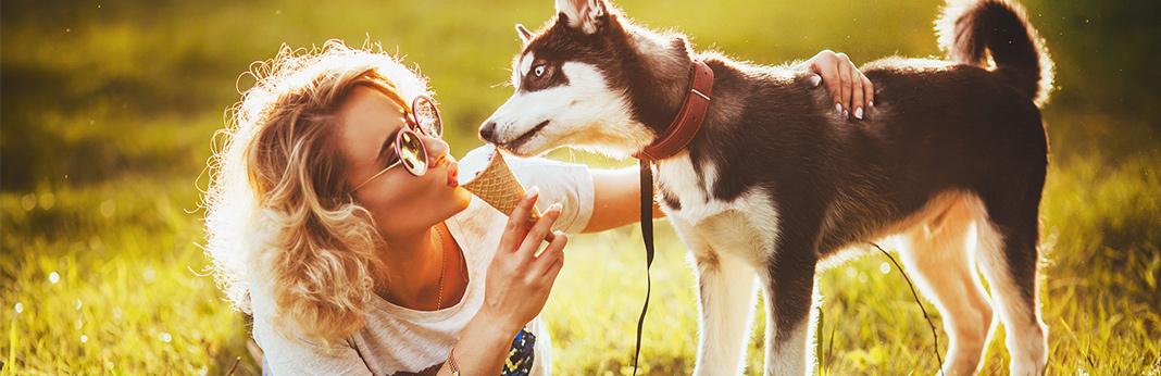 Can-My-Dog-Eat-Ice-Cream
