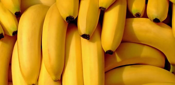 Do Cats Like Bananas
