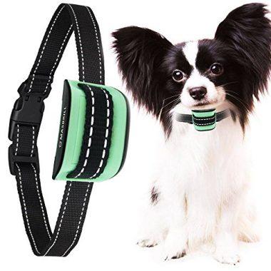 MASBRILL Small Dog Bark Collar