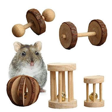 Pack of 5 Hamster Chew Toys