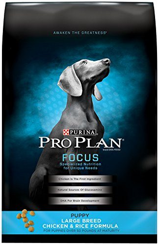 FOCUS Puppy Large Breed Chicken & Rice Formula Dry Dog Food