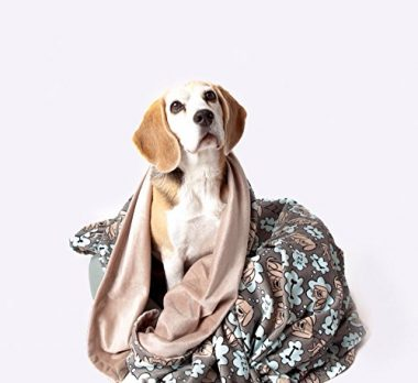 Premium Microfiber Pet Blanket