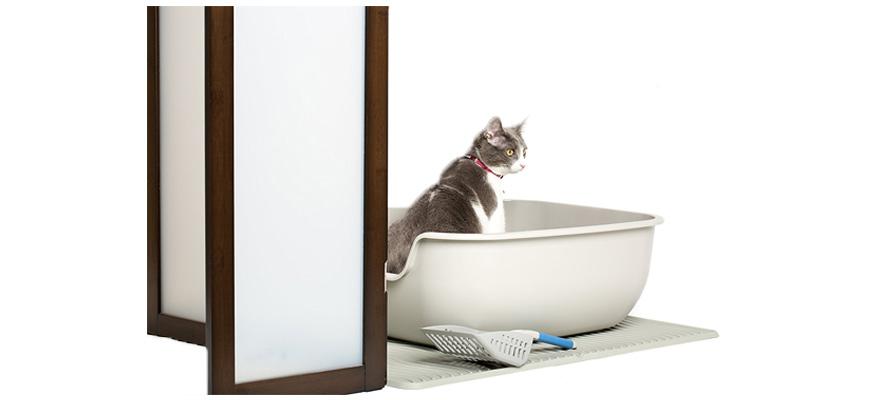 cat on a litter mat
