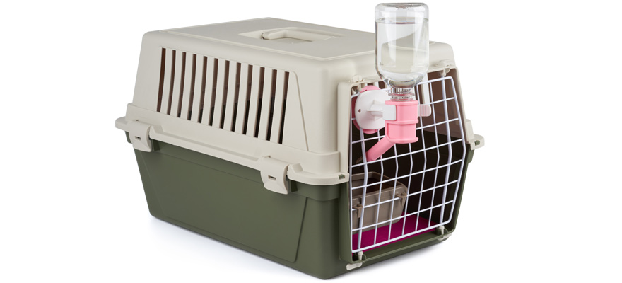 crate water bottle for dogs