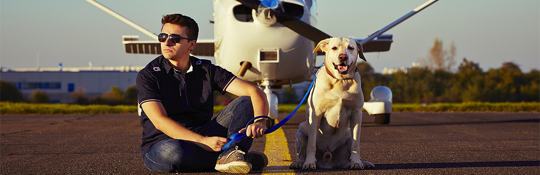 everything you need to know about flying with pets