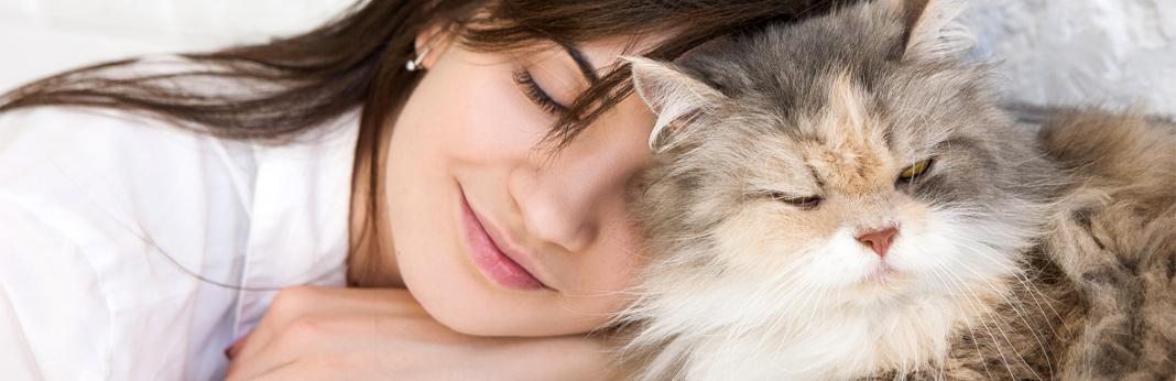 how-do-cats-show-affection