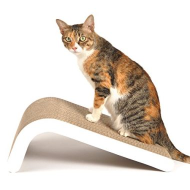 4CLAWS Curve Scratching Pad – BASICS Collection Cat Scratcher