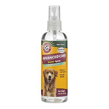 Arm & Hammer Dog Dental Care Tartar Control Dental Spray