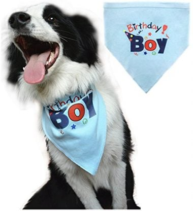 BINGPET Dog Birthday Bandana Pet Scarf Blue