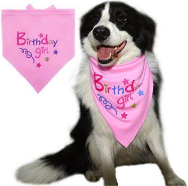 BINGPET Dog Birthday Bandana Pet Scarf Light Pink