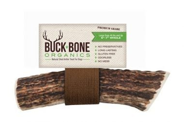 Buck Bone Organics Elk Antler For Large Dogs