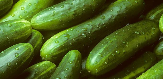 Cats Afraid Of Cucumbers