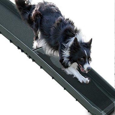 Perfect Life Ideas Pet Ramp