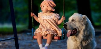 Guide for Preparing Your Dog for a New Baby