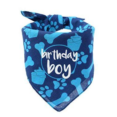 Hecho Dog Birthday Bandana – Boy