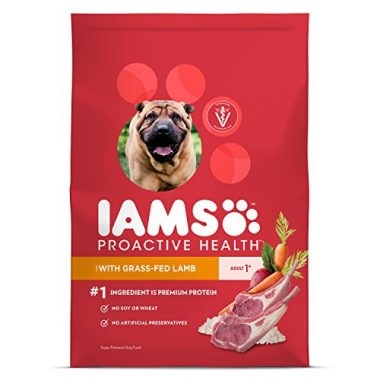 Proactive Health with Grass-Fed Lamb Dry Dog Food