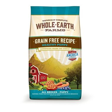 Grain Free Recipe Healthy Puppy Dry Dog Food
