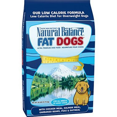 Fat Dogs Low Calorie Diet Dry Dog Food